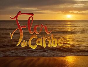 RESUMO SEMANAL – FLOR DO CARIBE: 30/11 a 05 de dezembro
