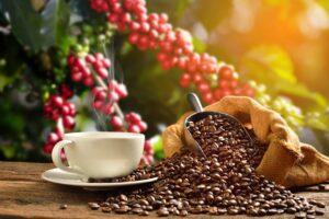 Agência cria linha de cafés especiais para rituais criativos