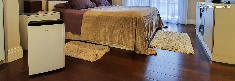 Umidade: Por que evitar o bolor dentro de casa?